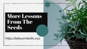 More Lessons from the seeds